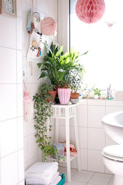 Bathroom inspiration whitney j decor - Houseplants for the bathroom ...