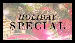 sidebar-holiday-special
